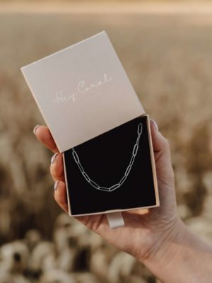 Big Paperclip Chain Necklace Silber